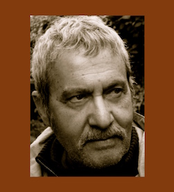 Michael Parenti quotes
