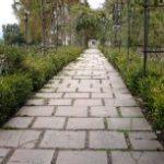 path toward excellence